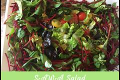 SAWA-Salad